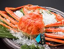 ◆「超」特選蟹懐石◆ワンランク上の贅沢…タグ付き最上級ブランド活かにを存分に堪能(1.5杯+香箱蟹)